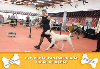 Exposição de CÃES - ENTRADA GRATUITA!